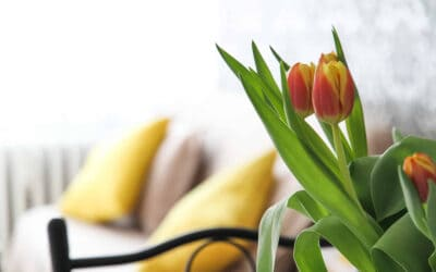 20 Ways to Refresh Your Home for Spring