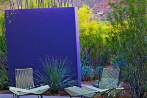 Creating a New Outdoor Room